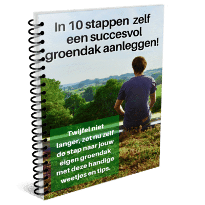 In 10 stappen een succesvol groendak om van te genieten